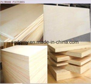 Cheap Plywood Sheet Waterproof Plywood Price for Package pictures & photos