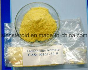 Trenbolone Acetate Steroid Drugs Testosterone Powder Revalor-H/Trenbolone Acetate (10161-34-9) pictures & photos
