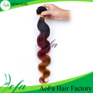 Wholesale Overseas Hair Unproccessed Human Remy Ombre Hair Weft pictures & photos