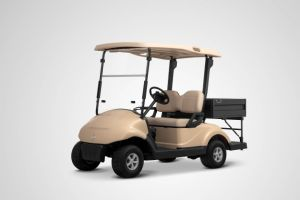 Cheap Electric Golf Cart with Cargobox for Sale pictures & photos