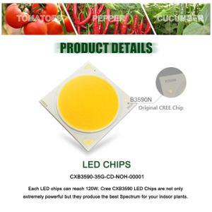 CREE Cxb3590 200W COB LED Grow Light Full Spectrum Dimmable 26000lm = HPS 400W Growing Lamp pictures & photos