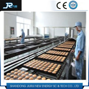 Stainless Steel Mesh Belt Conveyor with Baffle for Frozen Food pictures & photos