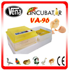 Automatic Incubator for Hatching Chicken Eggs, Quail Eggs Incubator 96 Eggs Incubator pictures & photos
