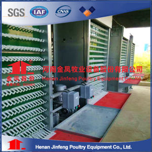 China Poultry Farm Equipment Layer Chicken Cages pictures & photos