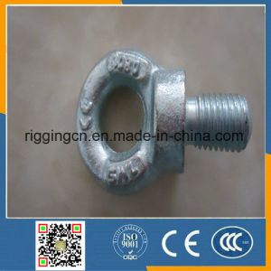 BS4278 Table1 BS Type Lifting Eye Bolt pictures & photos