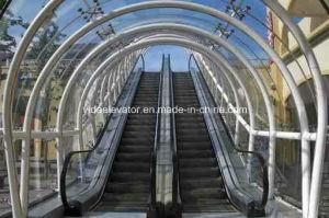 Escalator (indoor type) pictures & photos