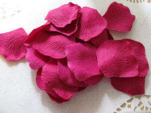 Fuchsia Dried Rose Petal pictures & photos