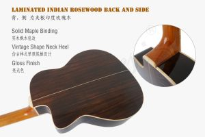 New Fashionable Stylish Gypsy Jazz Guitar with Bottom Price pictures & photos