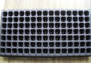 105 Cells Balck PS Flower Pot for Garden Black HIPS Seed Tray pictures & photos