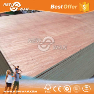 Bb/Cc Bintangor and Okoume Faced Commercial Plywood (NTB-OK2001) pictures & photos