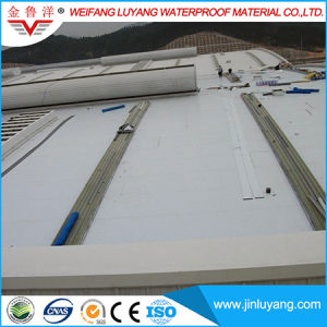 PVC Waterproof Membrane with Polyester Mesh Reinforcement for Flat Roof