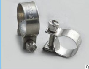 High Pressure Stainless Steel High Performance Mini Hose Clamps pictures & photos