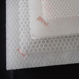 Polypropylene Honeycomb Core pictures & photos