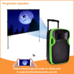 Professional Loudspeaker, PRO Audio Speaker, Cabinet PA Speaker with Projector pictures & photos
