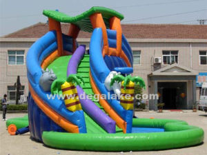 Attractive New Design Inflatable Water Slide for Amusement Park