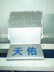 High Quality Wire Brush Tail Seal for Tunnel Boring Machine pictures & photos