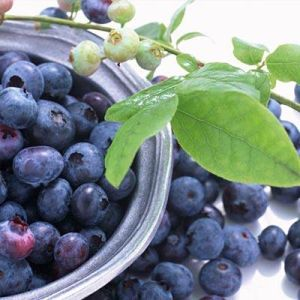25%Anthocyanins Bilberry Extract for Food and Beverage pictures & photos