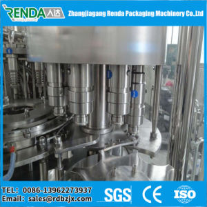 China Automatic Coconut Milk Filling Machine/Fruit Juice Bottling Equipment pictures & photos
