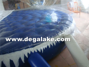 Customized Printing Background Inflatable Snow Globe for Hot Christmans pictures & photos