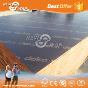 Doka Film Faced Construction Plywood Supplier pictures & photos