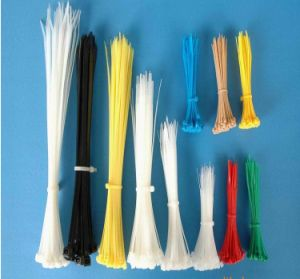 Self Locked Nylon Cable Ties pictures & photos