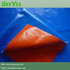 Double Colors Heavy Duty Poly Tarps pictures & photos