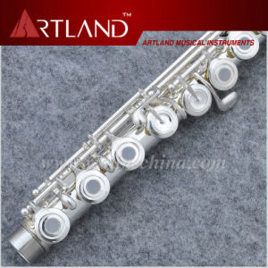 16 Open Holes Silver Plated Imported Cupronickel Professional Flute (AFL6507) pictures & photos