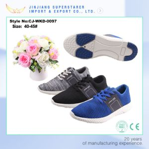 Jinjiang Factory OEM Mesh Running Sport Shoe for Men pictures & photos