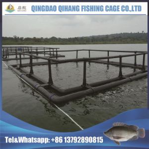 HDPE Pipes China Hot Selling Popular Fish Farming Cage pictures & photos