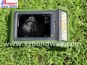 Medical Product Diagnosis Equipment Digtial Veterinary Ultrasound