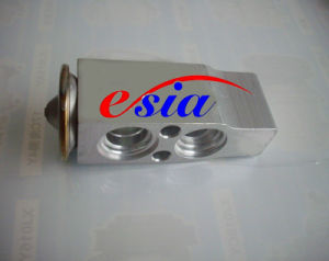 Auto AC Evaporator Expansion Valve 1248301184 pictures & photos