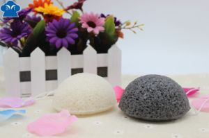 Latex-Free Sponge, Cosmetic Sponge, Makeup Sponge