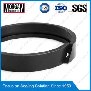 Fa Profile PTFE/Teflon/PA/POM Piston Guide Ring/Wear Ring pictures & photos