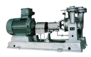Y Types Chemical Industry Circulation Centrifugal Pumps pictures & photos