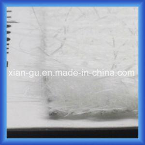 PP Glass Fiber Composite Mat pictures & photos