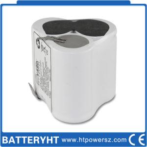 Custom Power Emergency Light Battery with Emergency Backup