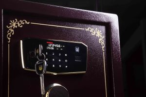 Security Home Safe Box with Digital Lock-Zhizun II pictures & photos