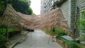 Camouflage Net pictures & photos