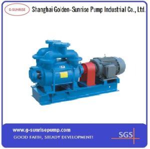 Sk Series Water Ring Vacuum Pump