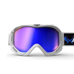 Ski Goggles (SNOW-2900) pictures & photos