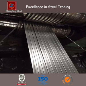 Mild Steel Stripped Coil / Sheet (CZ-C23) pictures & photos