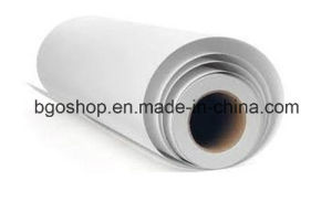 PP Film Roll up Stand Banner 270 pictures & photos