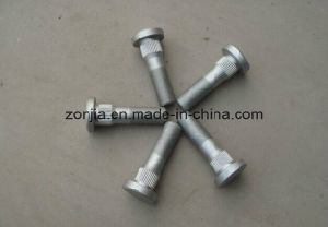 Hot Galvanized Bolt for Special Specification pictures & photos