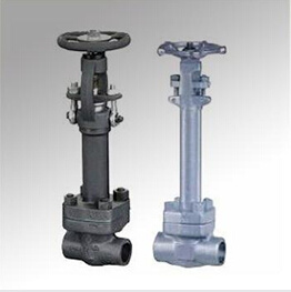 Cryogenic Welding Forged Steel Gate Valve (DTV-Z009)