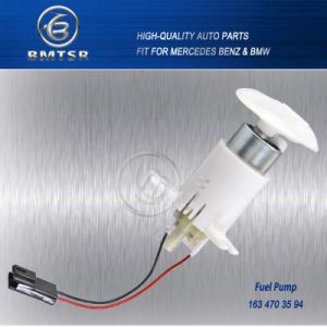 China Auto Spares Parts Electric Fuel Pump for Mercedes W163 1634703594 pictures & photos