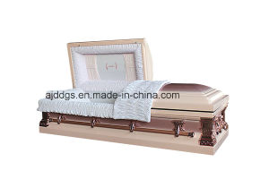 Lilac and Pink Coffin (18522262) pictures & photos