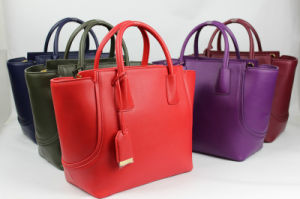 Elegant Fashionable Europian Style Leather Handbags for Womens Collections pictures & photos
