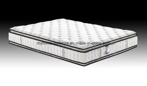 High Quality of Double Pillow Top Pocket Spring Mattress