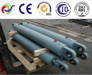 Project Oil Cylinder Manufacturer pictures & photos