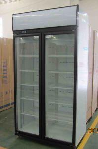 600L Double Door Showcase Cooler pictures & photos